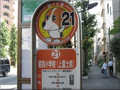 文京区ビーグル