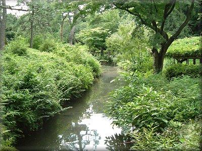 小石川後楽園自然